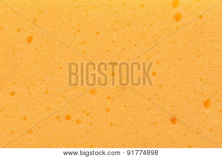 Background And Texture Of Yellow Sponge