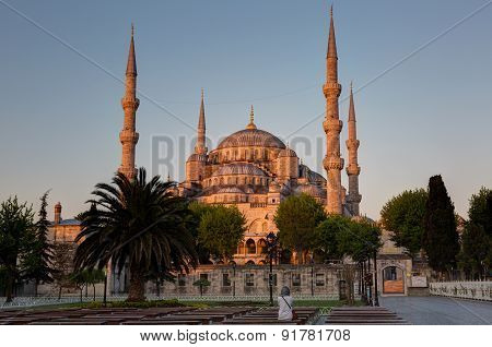 Girl Sitting On A Bench Looks At The Blue Mosque Lit With A Rising Sun