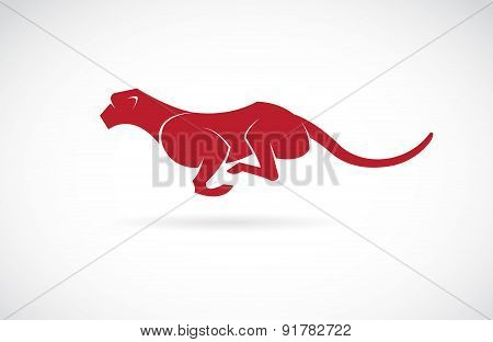 Vector Image Of An Cheetah On White Background