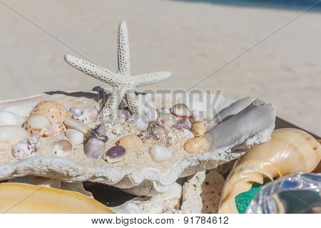 wedding ring on sea shell as wedding decoration details