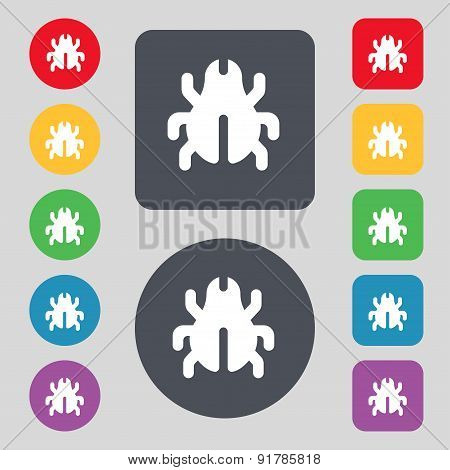Software Bug, Virus, Disinfection, Beetle Icon Sign. A Set Of 12 Colored Buttons. Flat Design. Vecto
