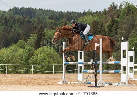 Jumping Horsewoman In Black Jacket. Side View.