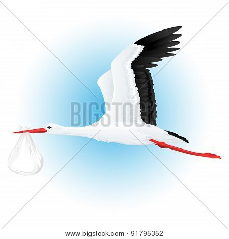 Stork Flying With Bundle