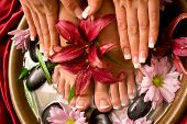 picture of pedicure  - Woman - JPG