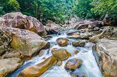 picture of jungle  - Beautiful photo of waterfalls with soft flowing water and large colored rocks - JPG