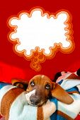 picture of hound dog  - Thoughtful Basset Hound puppy inside his dog house with a think bubble above his head - JPG