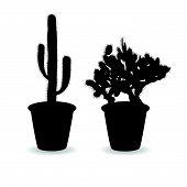 stock photo of peyote  - cactus set black art vector on white - JPG