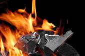 pic of firewood  - Burning Firewood With Sparks And Glowing Coals Close - JPG