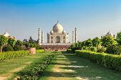 picture of mumtaj  - Taj Mahal in the evening Agra India - JPG