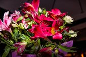 foto of night-blooming  - A bouquet of red and pink flowers close up at night - JPG