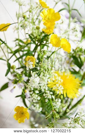 Meadow flowers yellow and white freshly picked up