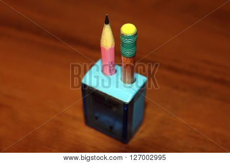 sharpened pencils in a blue pencil sharpener on brown table