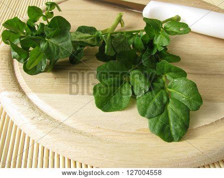 Fresh watercress bunch on wooden cutting board