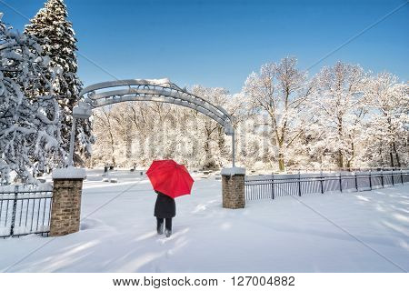A beautiful snowy winter scene at an old cemetery with a woman walking with a red umbrella as the snow clings to the tree branches and blankets the ground.