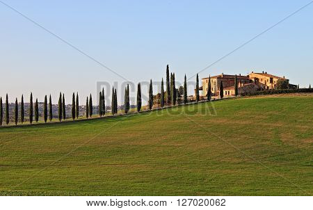 Landscape in Tuscany with luxury villa and cipresses - HDR