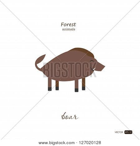 Boar in cartoon style on white background. Forest animals. Vector illustration