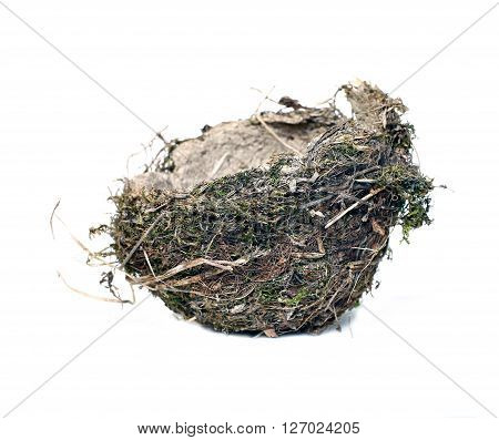Bird's nest of grass and twigs isolated on white background
