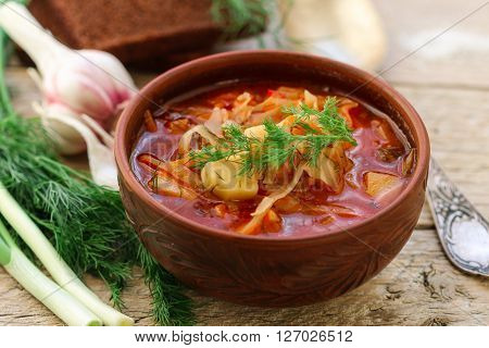 Borsch. Traditional Ukrainian vegetable soup made from beets, carrots,  tomatoes, potatoes, cabbage, greens and garlic