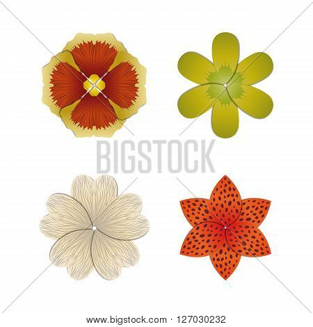 Flower buds vector design elements isolated on white background.