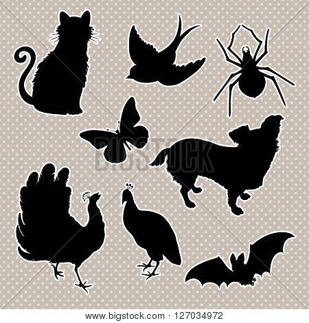 Vector set silhouettes : cat, bird, spider, butterfly, dog, peacock, bat