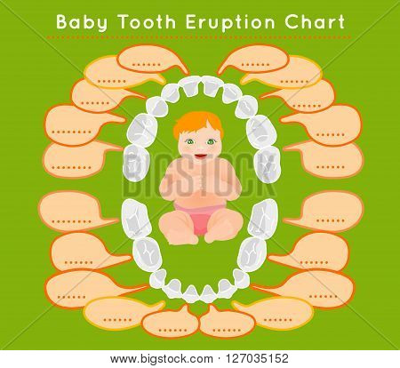 Baby prelimanary tooth eruption chart. Vector illustration. Editable image in bright colors on a green background.Children teeth infographic with a funny smiling kid. Poster or leaflet template