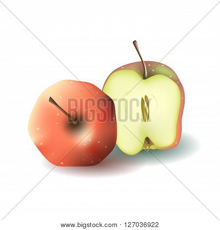 Two red vector apples. Whole apple and half of apple