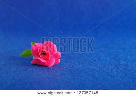 A single pink rose displayed in a small brown bottle on a blue background