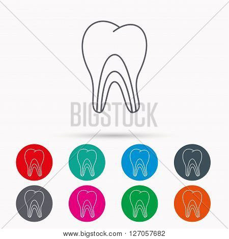 Dentinal tubules icon. Tooth medicine sign. Linear icons in circles on white background.