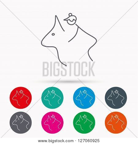 Horseback riding icon. Jockey rider sign. Horse sport symbol. Linear icons in circles on white background.