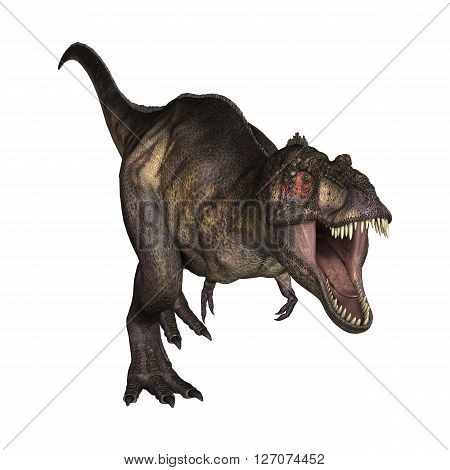 3D Illustration Tyrannosaurus On White