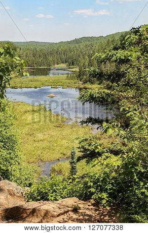 Three beaver lodges in a pond in Algonquin Park Ontario Canada