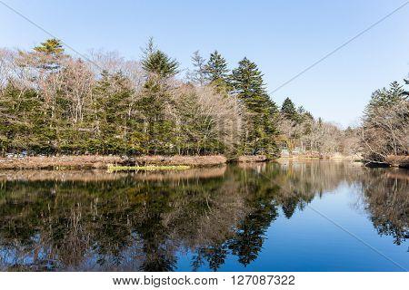 Water pond karuizawa