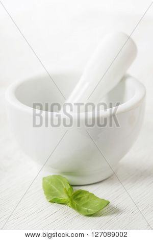 Ceramic Mortar with Pestle and basil over white