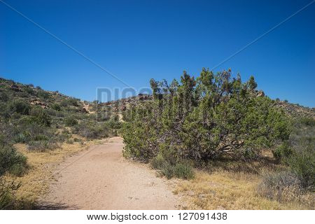 Walking trail leads into the low brush of southern California's Mojave desert near Santa Clarita.