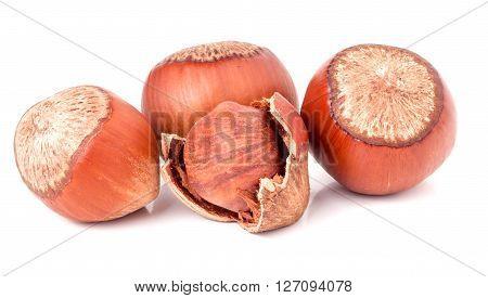 Four hazelnuts isolated on white background close-up macro.