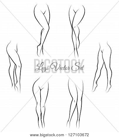 Woman legs vector. Female legs hand drawn sketch. Sexy legs for packaging and labels