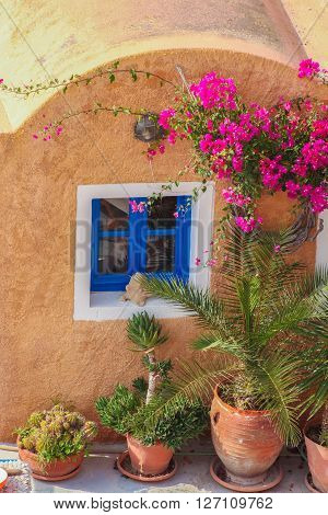 Traditional Greek House With Flowers In Oia Village On Santorini Island, Greece