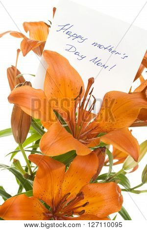 Orange tiger lily isolated on white background. In the color card To Mom