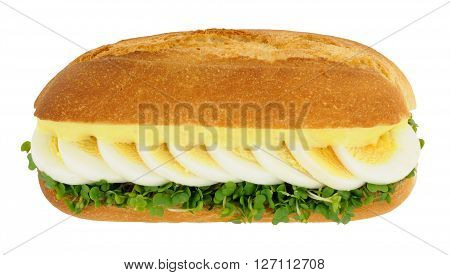 Boiled egg and cress sandwich sub roll with mayonnaise isolated on a white background