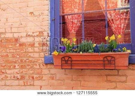 Pretty window box with Springtime flowers adding color and cheer