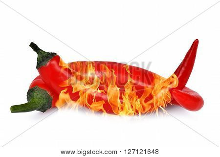 Burning red hot chili peppers isolated on white background