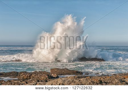 Breaking wave shoots high into the air on the Eastern Cape coast of South Africa