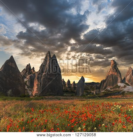 Rock formations and red flowers of Cappadocia in Central Anatolia Turkey