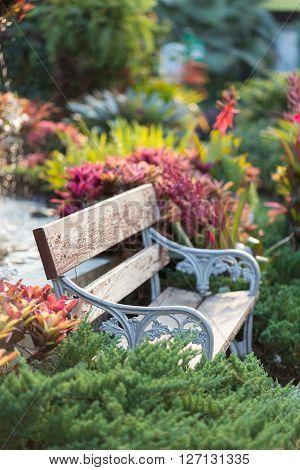 Old Vintage Bench In Flowers Garden