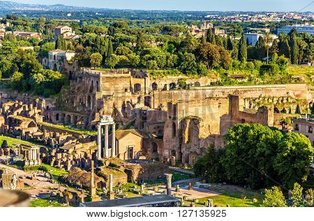 View of Domus Tiberiana in the Roman Forum - Italy