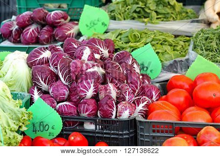 Radicchio Italian Chicory Vegetables at Farmers Market