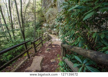 Mountain Hiking Trail In Kentucky. Hiking trail in the gorge of Natural Bridge State Park in Slade, Kentucky. The popular state park offers beautiful scenery and a variety of hiking trails in the mountains of Kentucky.