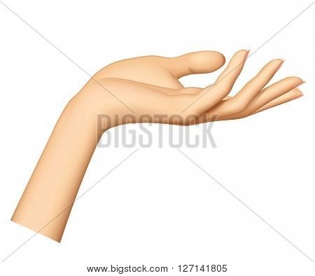 Woman's hand isolated on white background. Female hand stretching palm up. 3D illustration