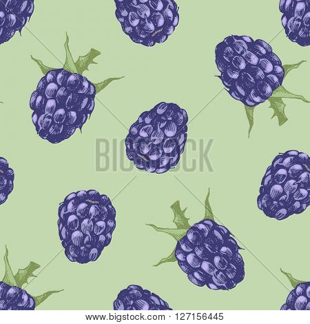 Hand drawn blackberry seamless pattern on green background