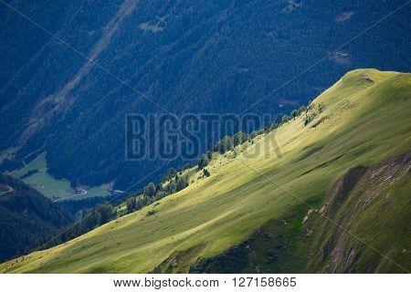 Alpine landscape with green fields